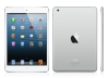01 - iPad mini - WiFi + 4G - 16GB only thumbnail