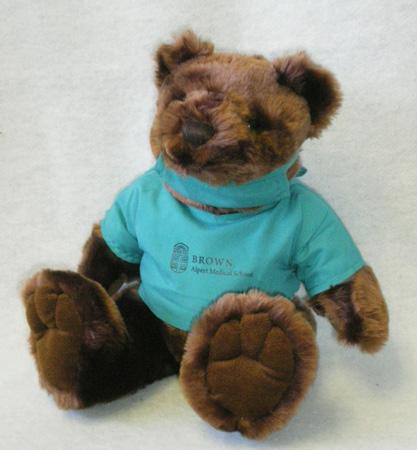 Teddy Bear - Alpert Medical School Scrub Teddy Bear
