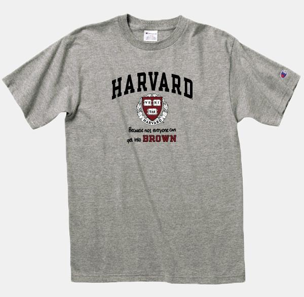3093f7eeefd5 Champion Grey Harvard Tee - $19.99