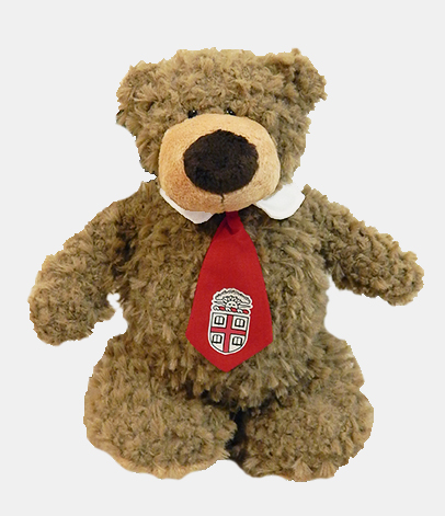 Image For Archie Bear with Red Crest Tie