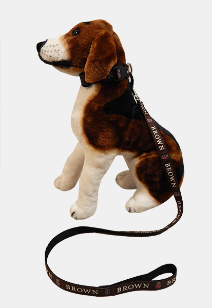 Image For 1 - Dog Leash - Brown Crest  **NEW**