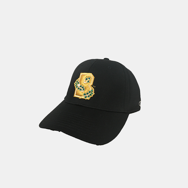 Image For Champion Black Fitted Cap