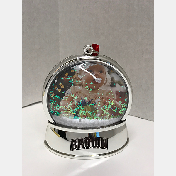 Image For Snowglobe Photo Magnet/Ornament