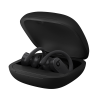 Cover Image for Powerbeats Pro Totally Wireless Earphones - Black