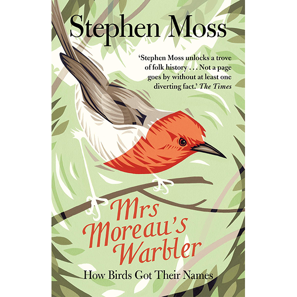 Image For <I>Mrs. Moreau's Warbler</I>