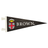 12X30 Full Color Pennant Image
