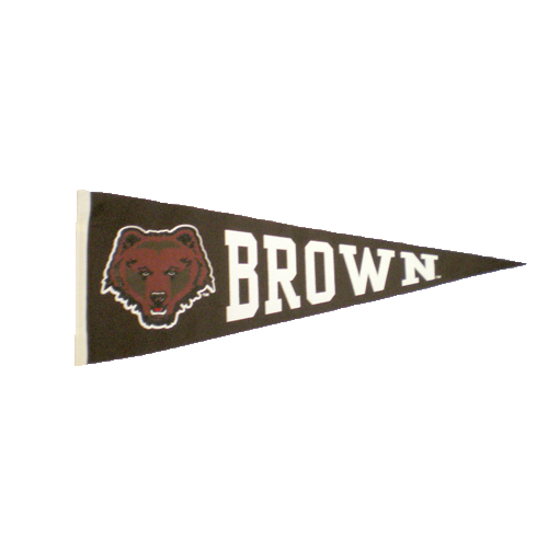 Image For Pennant - Brown Bear Pennant